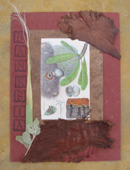 Banksia Collage Note Card