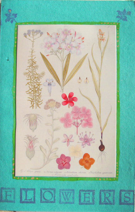 Flowers Botanical Note Card