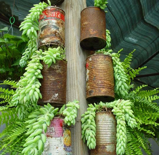 Tin Can Tower Recycles Garden Water