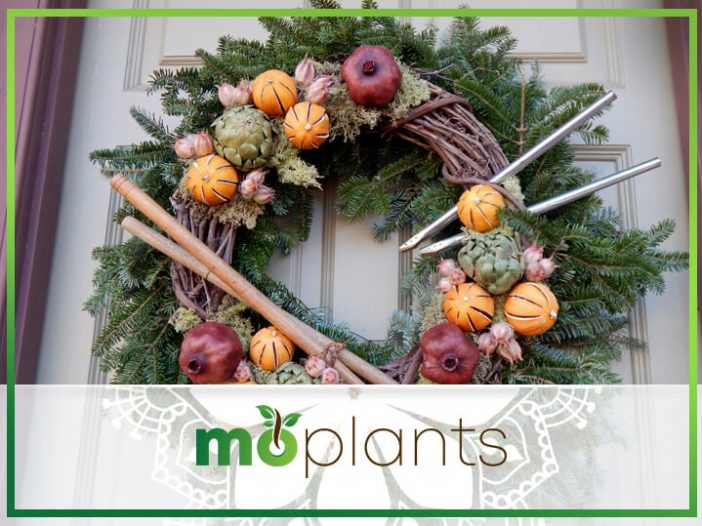 Free eBook: Green Holiday Decorating From The Garden