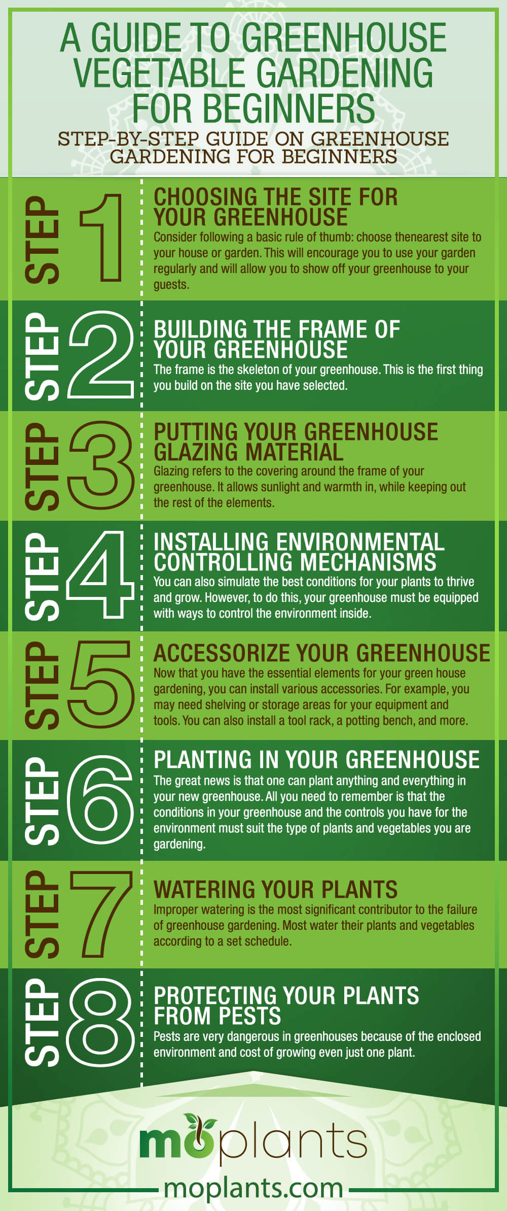 Greenhouse Vegetable Gardening for Beginners Infographic