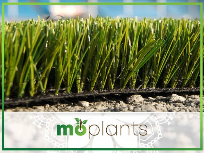 Yardsmart: Artificial turf grows up